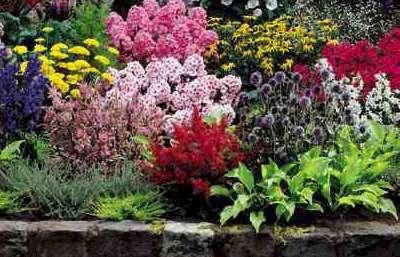 Penrith Lawn Mowing Garden Care Services